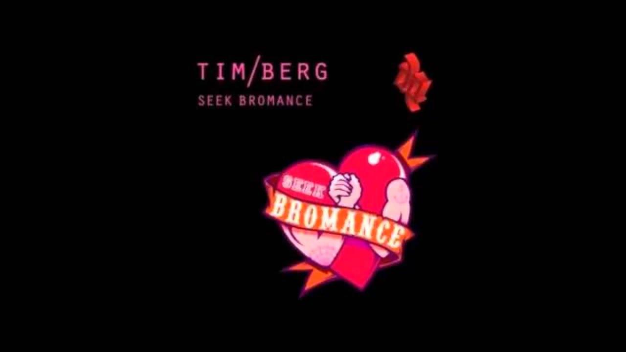 Download Tim Berg - Seek Bromance (Samuele Sartini radio edit)