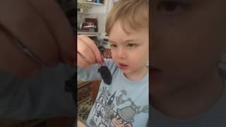 Gara Dut u çok seven Ömerçip :) | kids loving mulberry