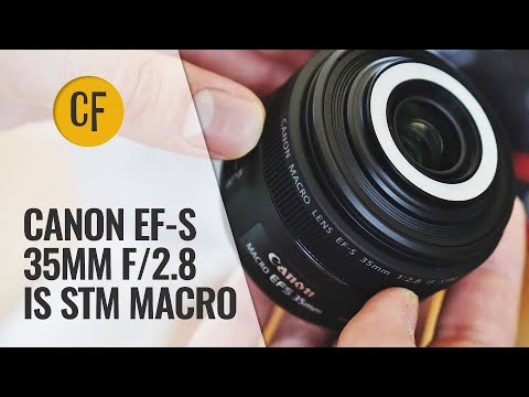 Canon EF-S 35mm f/2.8 IS STM Macro lens review with samples