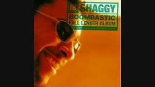 Shaggy - Boombastic (album version)