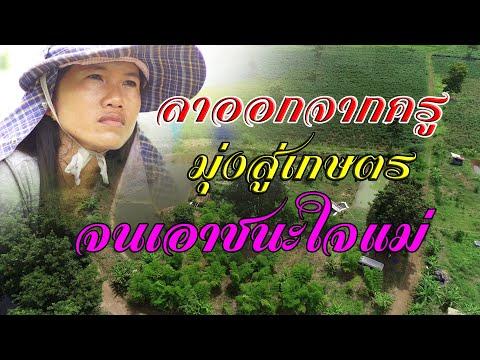 โคกหนองนา โมเดล เกษตรทฤษฎีใหม่ 4.0 สู้จนชนะ