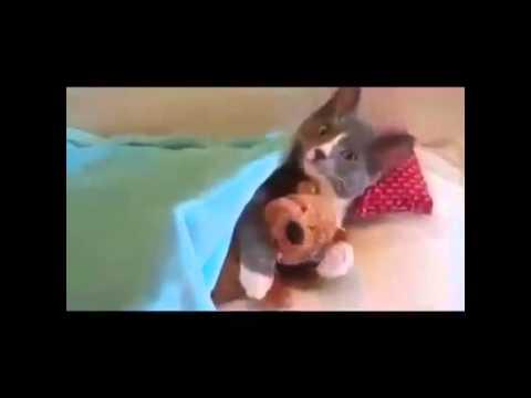 Sie liebt ihren Teddybären