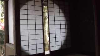 常照寺 その4 遺芳庵 吉野窓 京都の紅葉名所 Josho-ji Temple autumn leaves attractions in Kyoto part.4