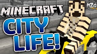 Minecraft Cars, Trains, and Motorcycles! - Minecraft City Life!! - Zebra