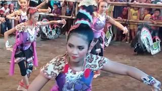 Uwoow!!! Jathilan Turonggo Mudho Dayu Putri C4nTik