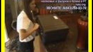 видео служба дезинфекции астана