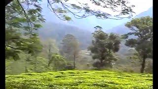 NATURE AROUND VALPARAI AND SOLAYAR IN TN  HD