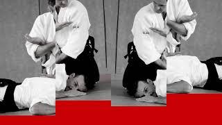 www.aikidobisel.com