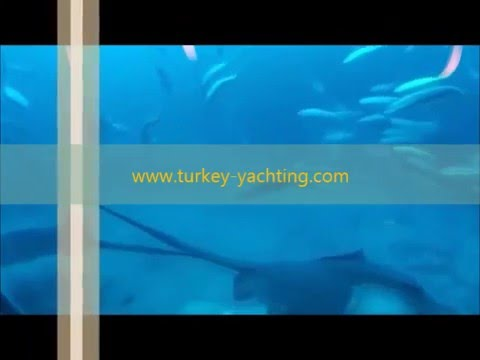 Antalya Tours Attractions Submarine Excursion