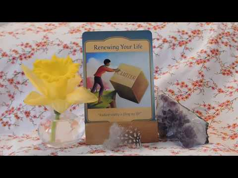 Daily Oracle Card Reading -Renewing Your Life