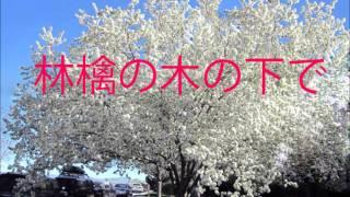 伊東ゆかり|林檎の木の下で Yukari Ito ringo no ki no shita de