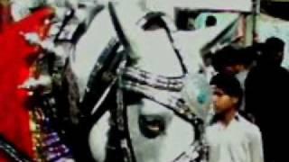 Nawab Shah Jaloos zuljanah & zayarat 2011