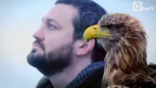 FRITZ KALKBRENNER - Void (Official Video)