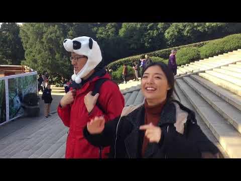 China Study Tour 2017