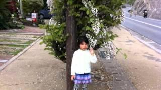 田中家族 田中えみ 検索動画 16