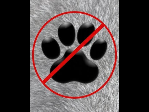Pets banned in Alabama