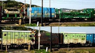 EH500-41 貨物列車 3054レ 向後スターチ UT4A JOT UM20A 丸玉産業 U36A コネコロジー積載