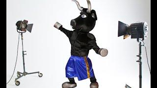 The Bull mascot costume | Mascot custom Anastasia