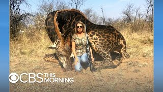 "American hunter in viral photo ""proud"" of the giraffe she killed"