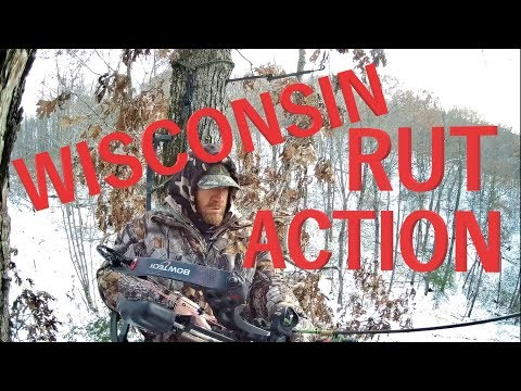 Wisconsin Rut Action - Bow Hunting In Single Digit Temperatures In Western Wisconsin