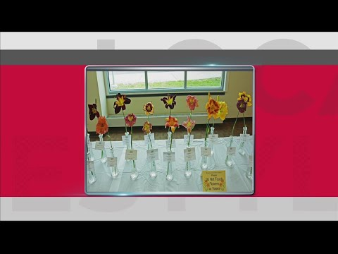 SW Indiana Daylilly Society Display Show