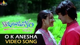 Kotha Bangaru Lokam Video Songs  O K Anesa Video Song  Varun Sandesh, Sweta Basu