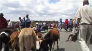 タンザニアとケニアの国境周辺、このあたりは、マサイ族のホームグラウ...