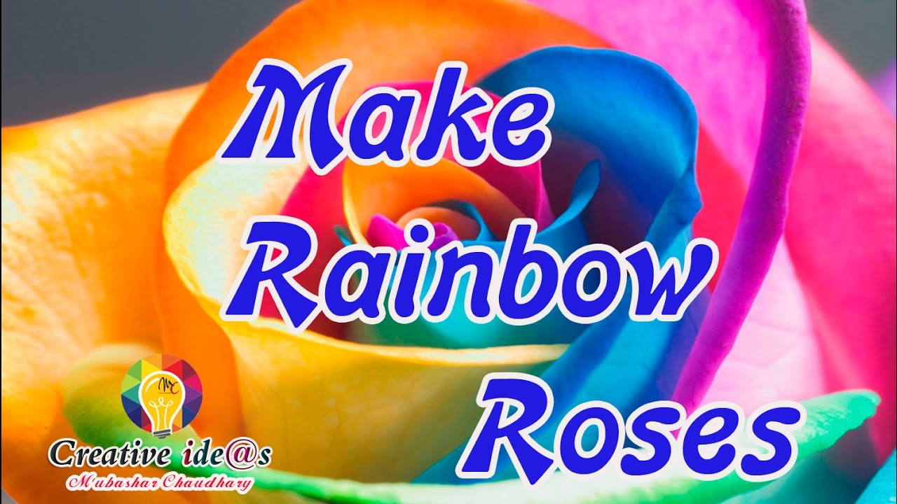 Make Real Rainbow Roses In Home
