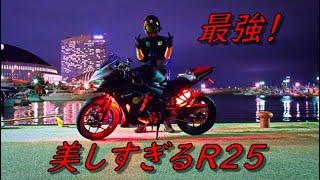 美しすぎるR25のおすすめカスタム紹介【YZF‐R25】【モトブログ 】