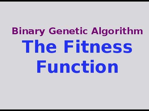 Genetic Algorithms 7/30: The Fitness Function