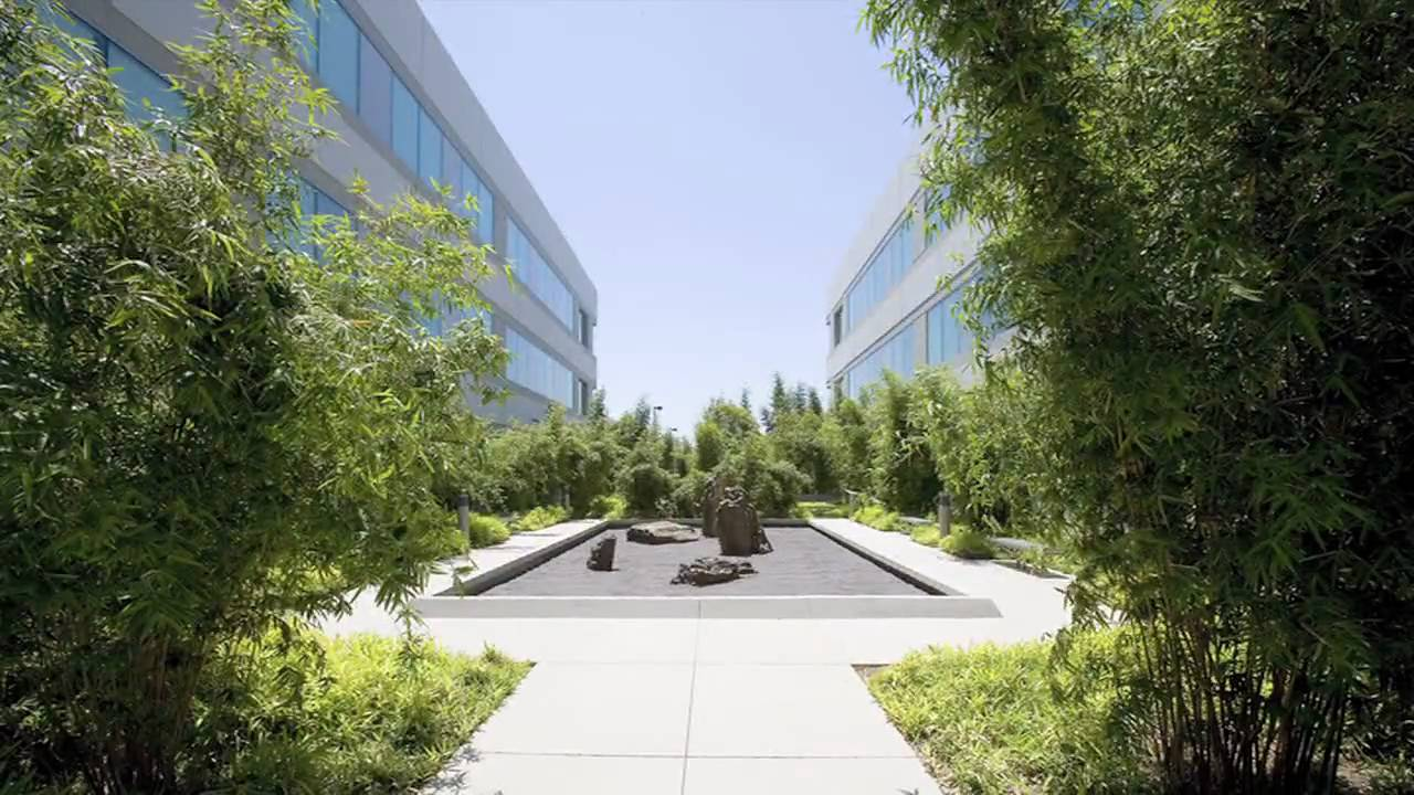 therapeutic and healing landscape