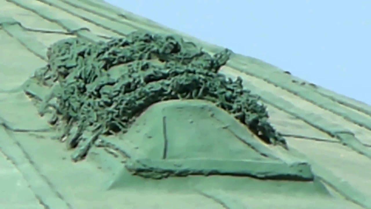 قبر الوهابي على قبة الرسول الأكرم الذي اراد هدم القبة المشرفة و إبن عثيمين يأيد