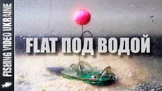 Как работает кормушка ФЛЭТ под водой | 1080p | FishingVideoUkraine