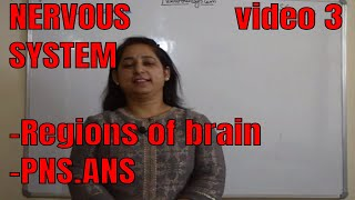 NERVOUS SYSTEM (Fore brain ,Mid brain, Hind brain, PNS, ANS)