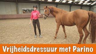 Vrijheidsdressuur met Parino + Winnaars Horse Event | PaardenpraatTV
