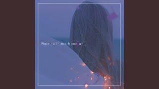 Walking In The Moonlight Walking In The Moonlighte