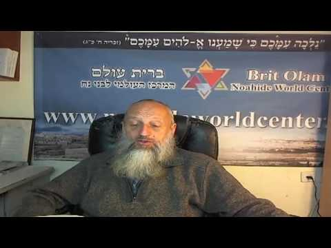 Знакомство с книгой Кузари, р. Йона Левин