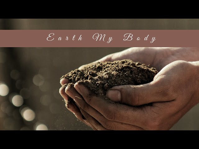 Meditation with the Elements: Earth My Body