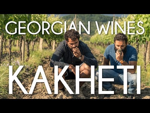Kakheti, the wine-making region of Georgia - Cinematic travel Vlog by Tolt #6