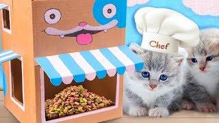 DIY Cardboard Cat Café | Craft Ideas for Cats & Kittens