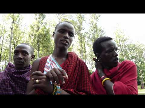 Maasai Health | The Secret to Leanness and Longevity