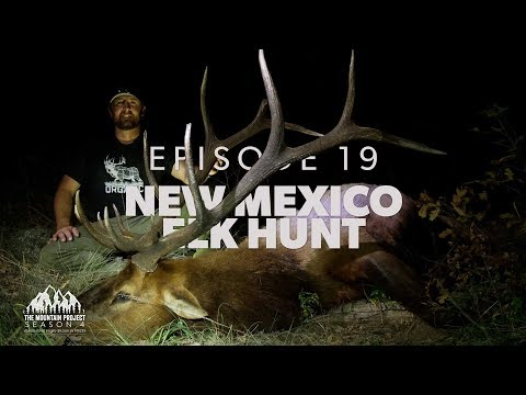 Finally, Chase finds a good bull  - Ep.19 - New Mexico Rifle Elk Hunt