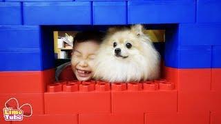 거대블럭으로 강아지 뽀뽀집 만들기 장난감 놀이 LimeTube &toy review