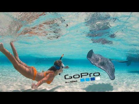 GoPro: Stingray City Cayman Islands, How to Kiss A Stingray | 1080p HD