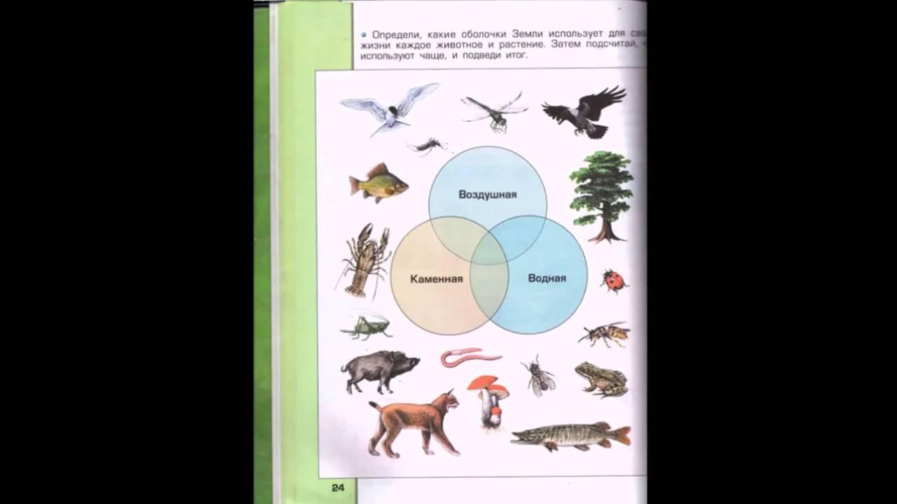 учебник по окружающему миру 4 класс 1 часть читать