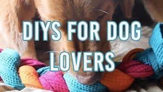 4 Cheap And Easy Dog Lover DIYs