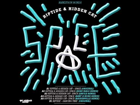 RipTidE & Hidden Cat - Space (original)
