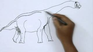 How to Draw an Abydosaurus