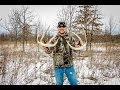 Whitetail Sheds & Deads 2014