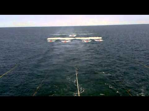 2d Seismic , East China Sea